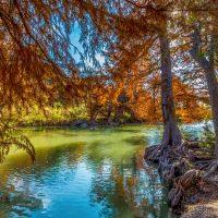 Fall Foliage on Guadalupe State Park near Austin