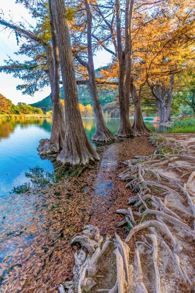 Fall Foliage on Frio River at Garner State Park, Texas.