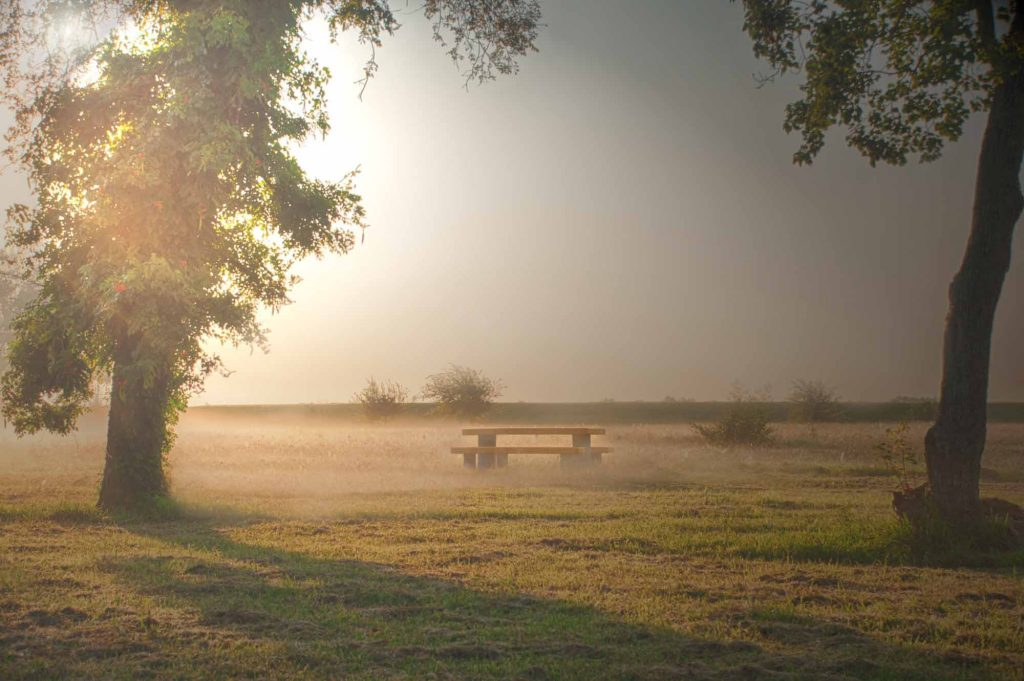 Misty Port Arthur, Texas