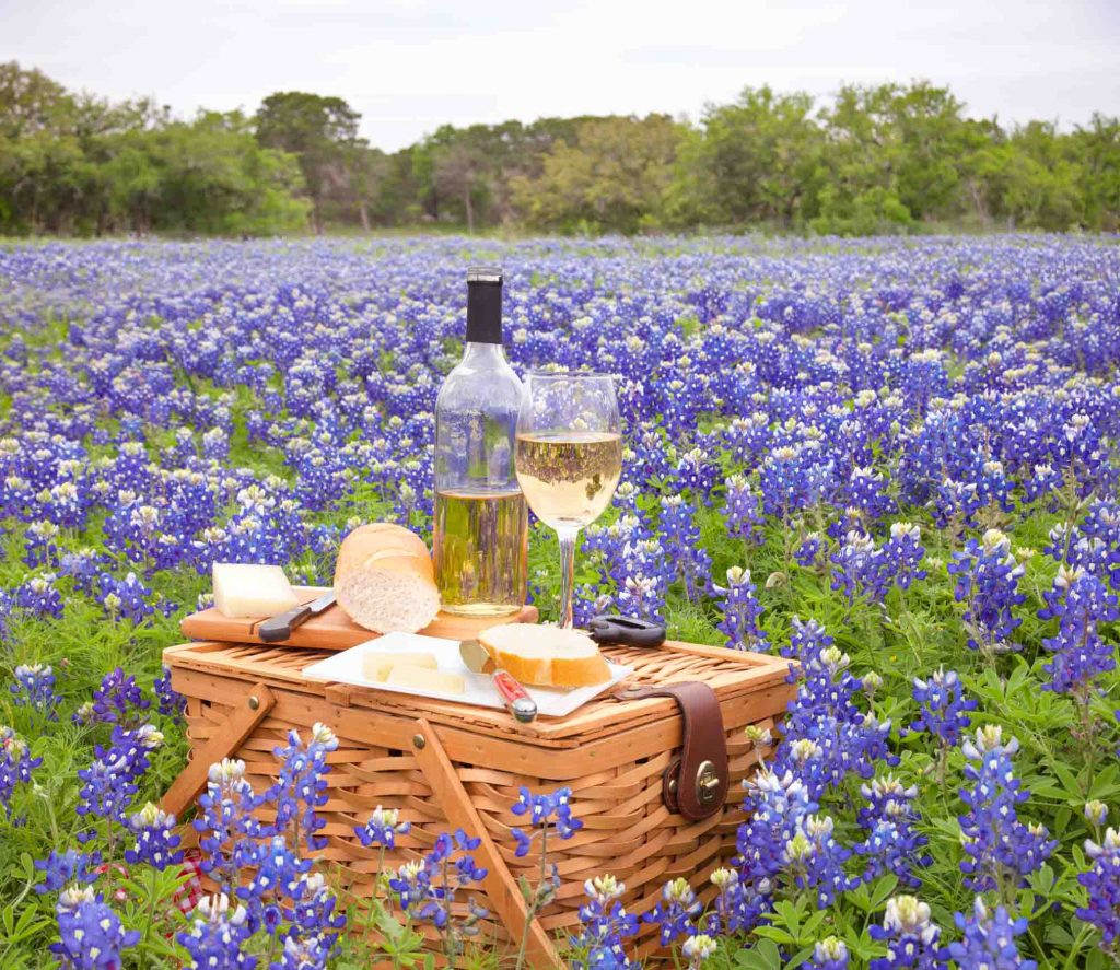 Picnic basket with wine in the Texas Wine Country