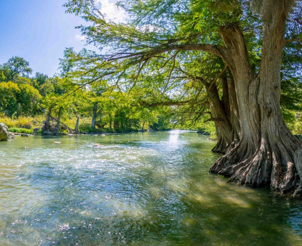 Guadalupe river state park in Texas offers the best hiking in San Antonio