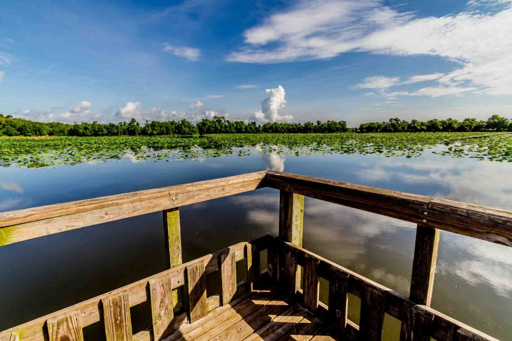Elm Lake Loop Trail is one of the best hiking trails in Houston