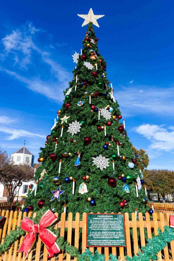 Christmas Tree in Fredericksburg