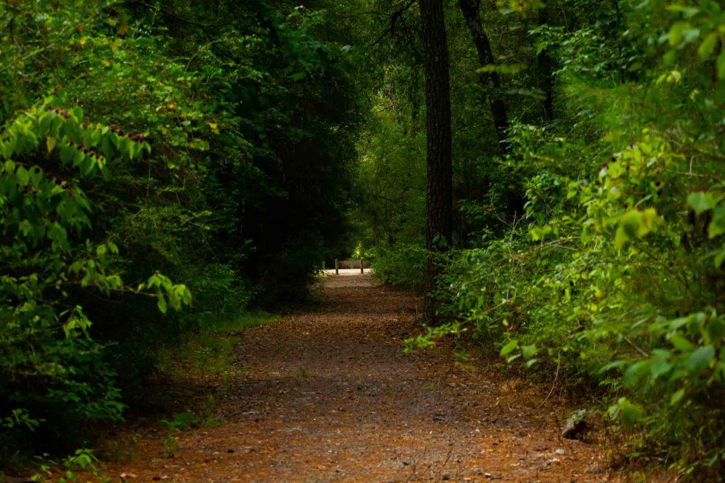 Peach Creek Trail is one of the best trails for hiking in Houston