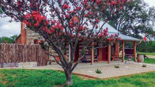 Romantic cabin in Fredericksburg TX