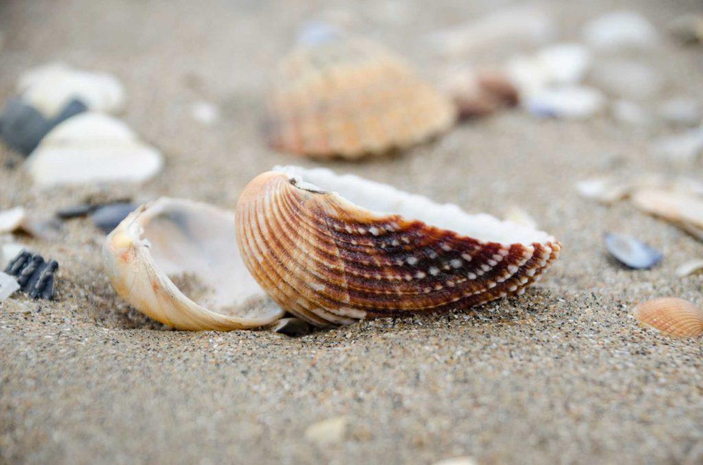 Sylvan Beach is one of the beaches near Houston, Tx