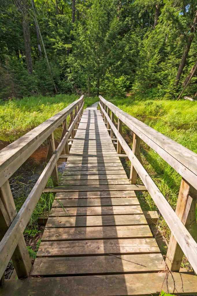 Sundew Trail is one of the best trails for hiking in Houston