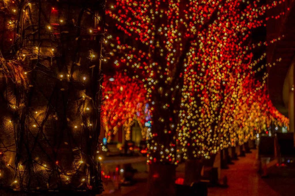 Marveling at the Spectacular Holiday Lights is one of the best ways to spend Christmas in Houston