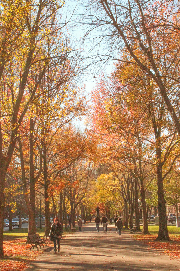 Boston, Massachusetts is one of the best fall vacations in the USA