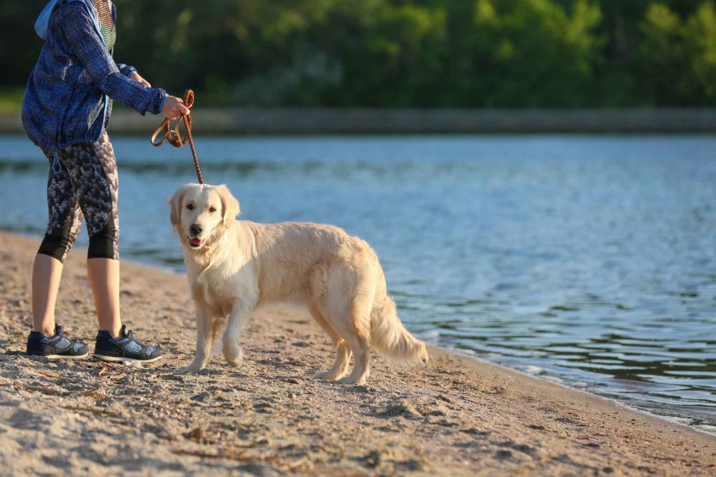 The secret beach at Roy Guerrero Park is one of the best beaches near Austin