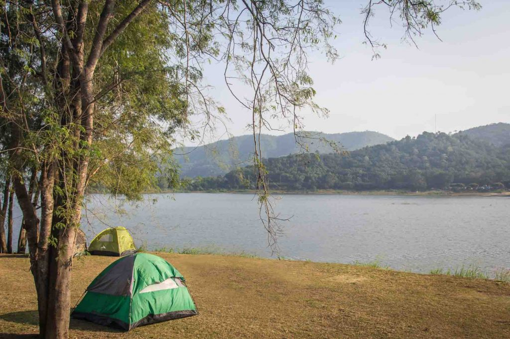 Bastrop State Park is one of the best state parks near Austin