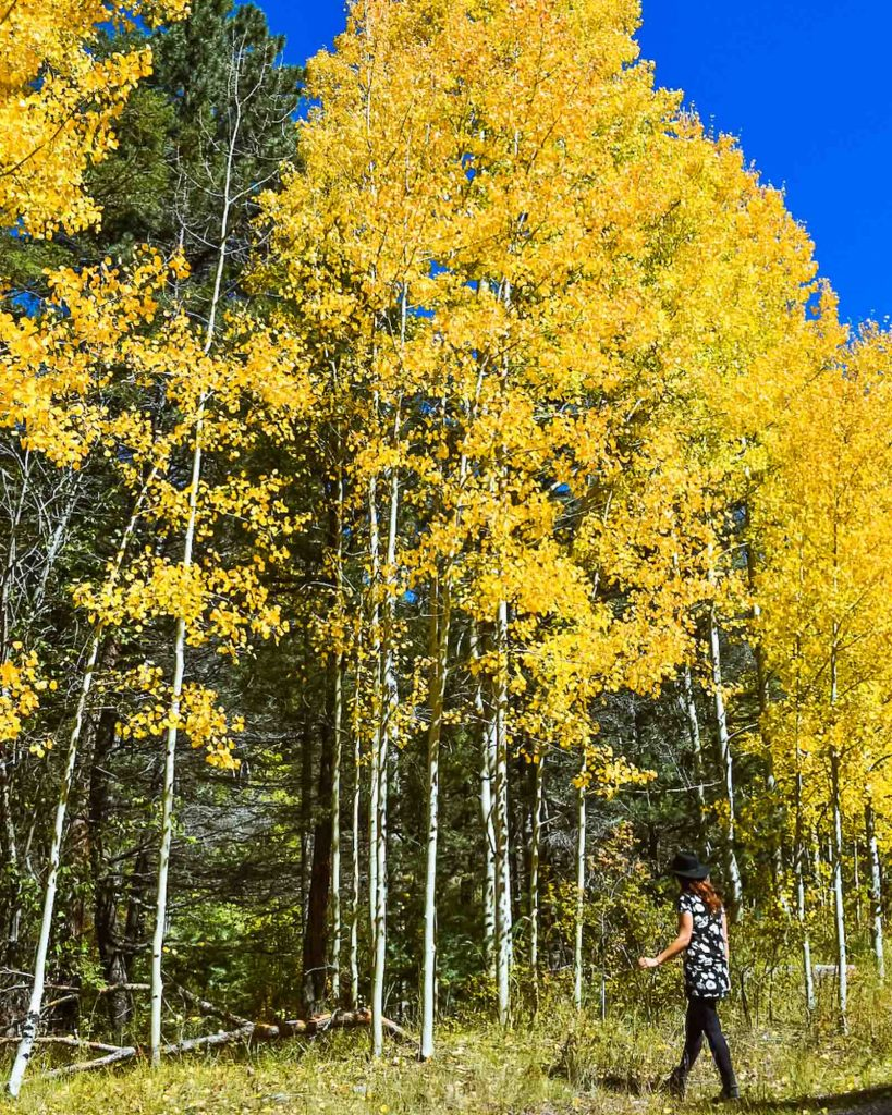 Santa Fe, New Mexico is one of the best fall vacations in the USA
