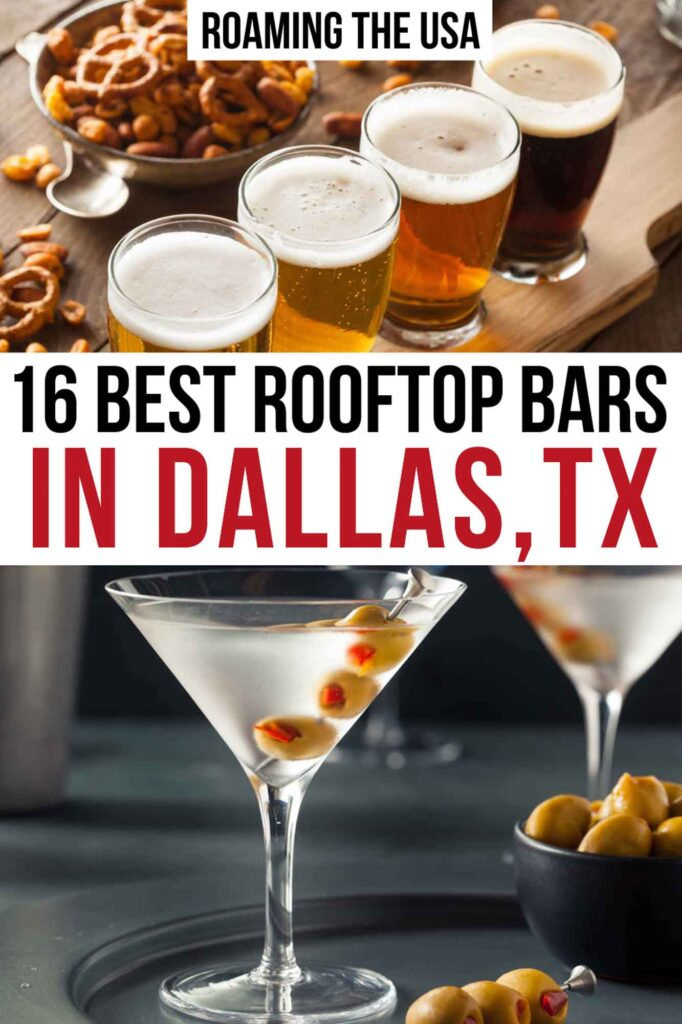 Best Rooftop Bars in Dallas Pinterest graphic