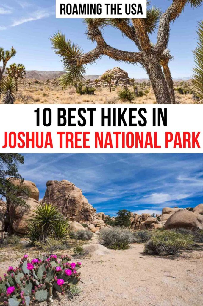 Best Hikes in Joshua Tree National Park Pinterest Graphic