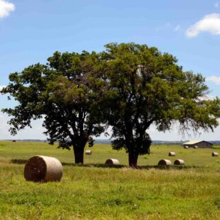Lyndon B. Johnson National Historical Park is one of the top national parks in Texas