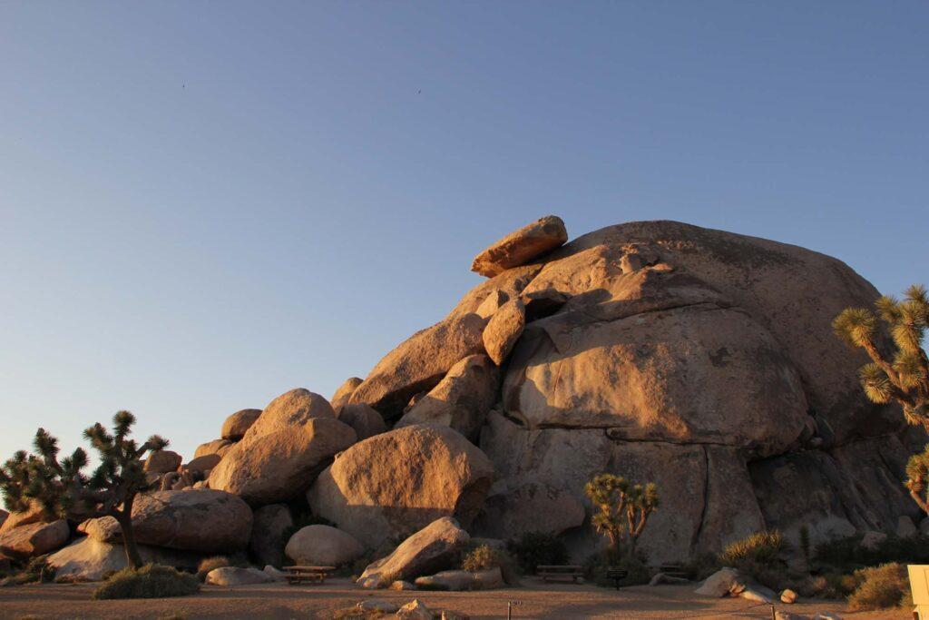 Cap Rock is one of the best hikes in Joshua Tree National Park