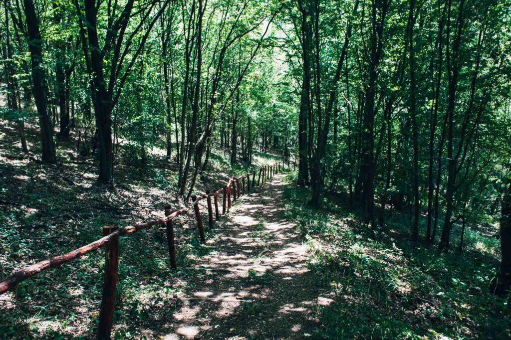 El Camino Real de los Tejas is one of the top national parks in Texas