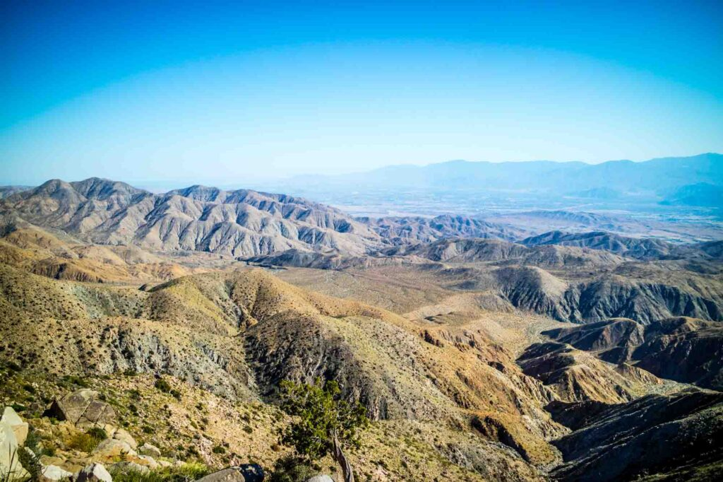 Ryan Mountain is one of the best hikes in Joshua Tree National Park