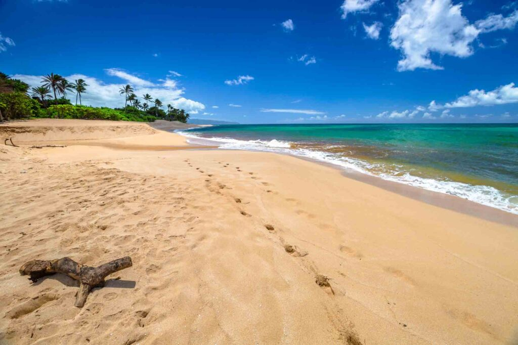 Exploring the Sunset Beach is one of the things to add to your 3 day in Oahu itinerary
