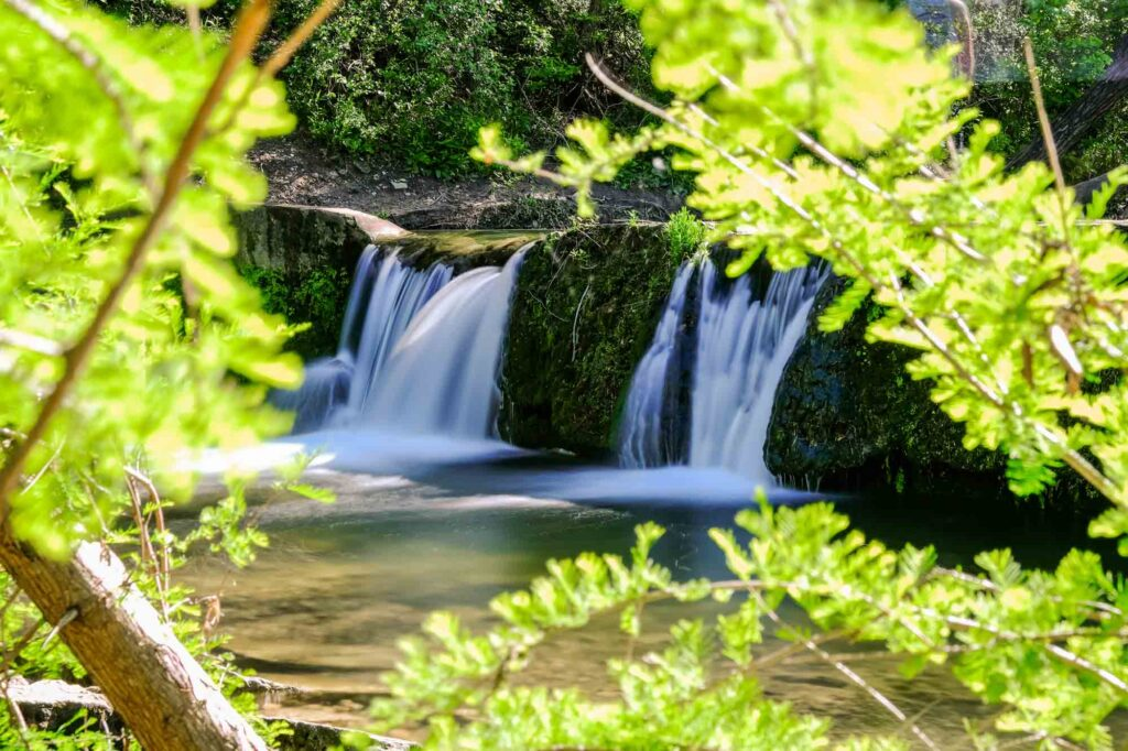 Bull Creek Trail is one of the best hiking trails in Austin