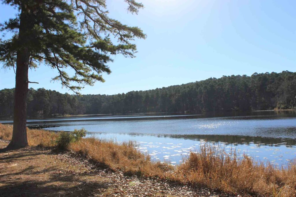 Daingerfield State Park is one of the best places to experience fall in Texas