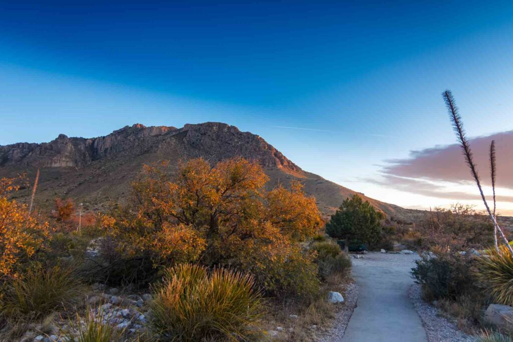 Guadalupe Mountains National Park is one of the places to see fall foliage in Texas