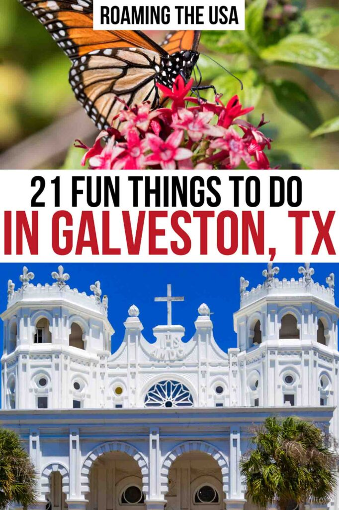 Things to Do in Galveston, TX, Pinterest Graphic