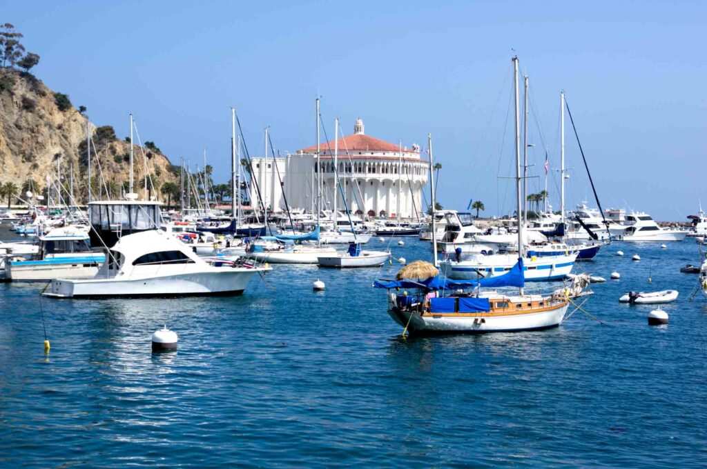 Santa Catalina Island in California is one of the best summer vacations in the USA