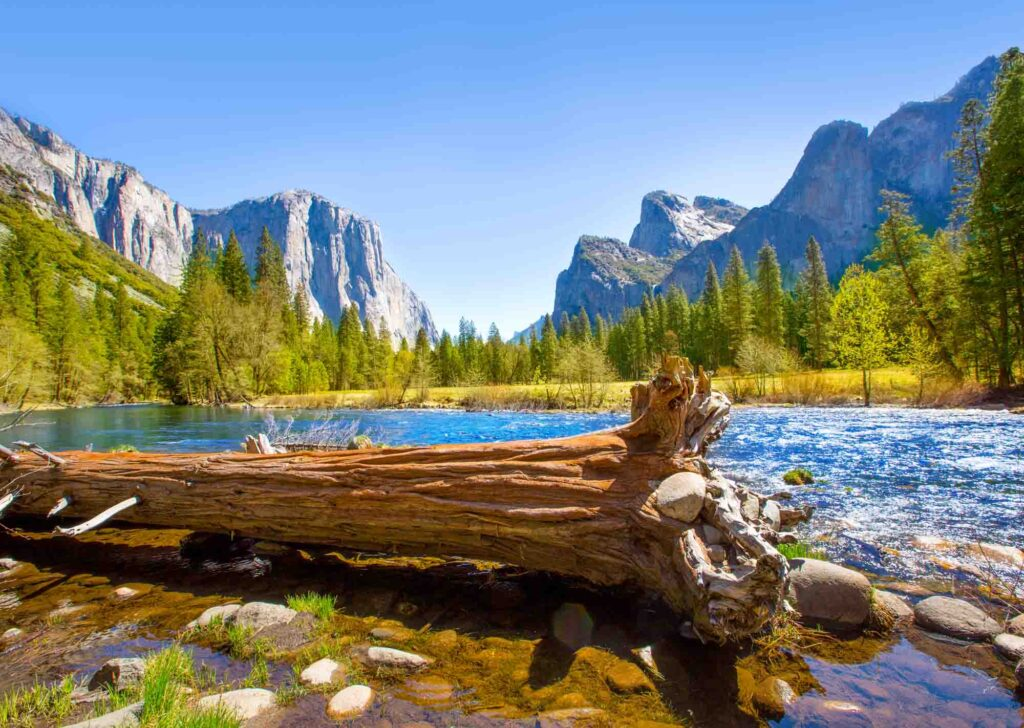 Yosemite National Park, California is one of the best summer vacations in the USA