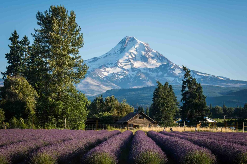 Hood River, Oregon is one of the most romantic getaways in the United States for couples
