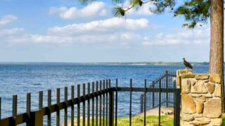 Taking a dip at Lake Conroe Park is one of the fun things to do in Conroe, TX